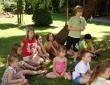 Lato w mieście - księga chronionych gatunków