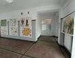 """Wystawa \""""Drzewa\"""" - górny hol Domu Kultury"""